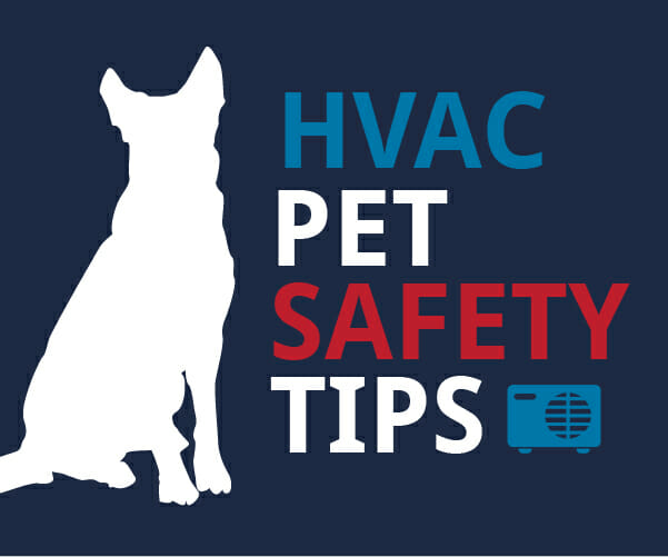 HVAC Pet Safety Tips